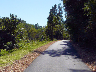 Trails at Collins Park