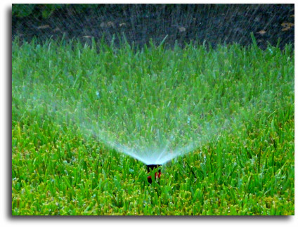 Spring Texas homes sprinkler systems