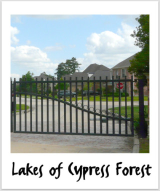 Lakes of Cypress Forest