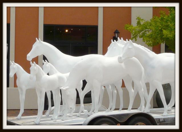 NAM horses at Vintage Park Houston