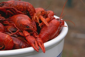 Crawfish Festival Old Town Spring