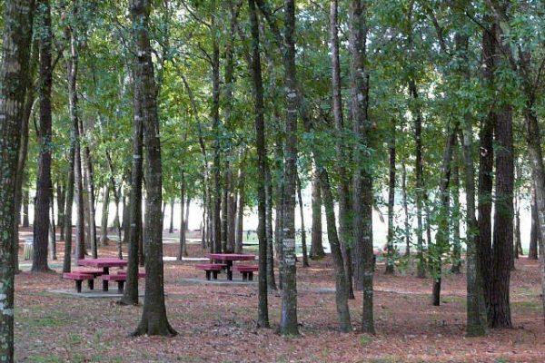 Oaks of Devonshire park