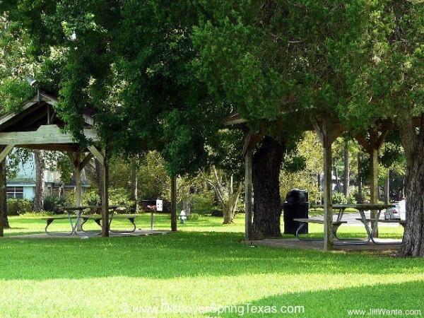 Spring Creek Forest playground