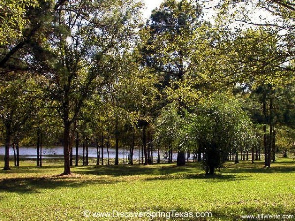Spring Trails homes for sale