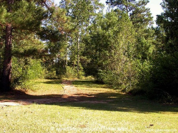Spring Trails houses for sale