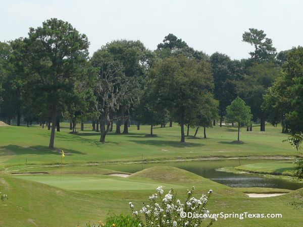 Champion Forest golf course