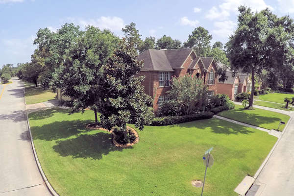 3603 Walnut Forest