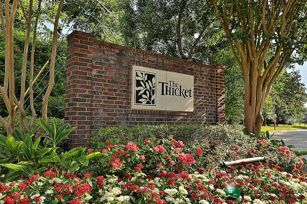 thicket spring tx