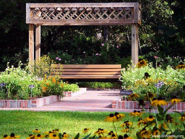 Bench At Mercer Botanic Gardens