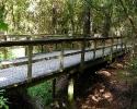 mercer-arboretum-bridge.jpg
