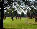 Meyer Park soccer fields